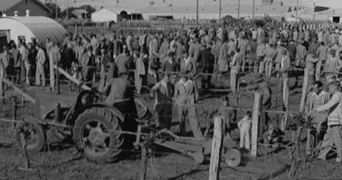 1954_J_Rigby_Rotary_Hoe_Vine_Dodger